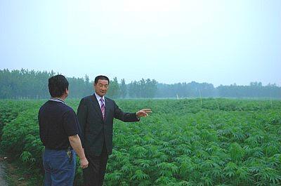 보성삼베섬유 햄프렉스 삼베농장 관리(유대근 회장님)